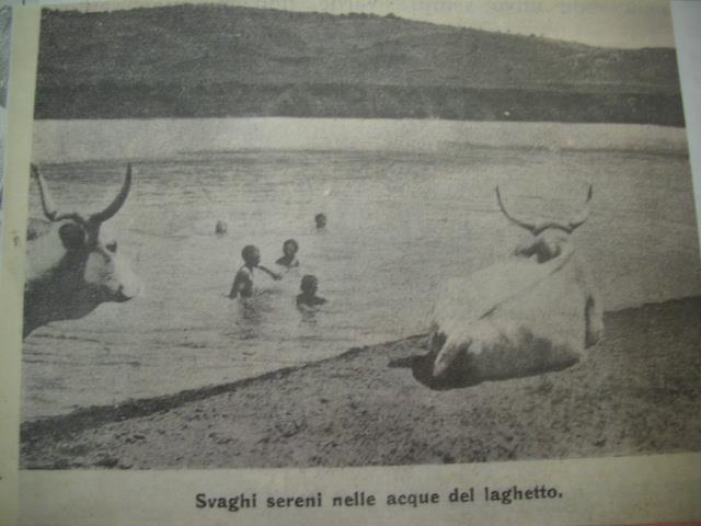 Bambini capenati che nuotano nel Lago Puzzo, con dei guardiani particolari..! sembra il Gange con le vacche sacre!
